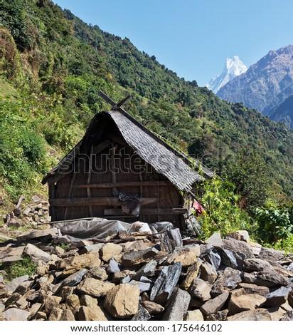 Nepali hut on the path to Annapurna - Himalaya - stock photo