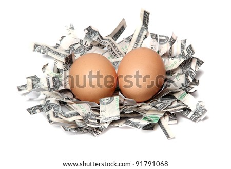nest made of shredded dollars with brown eggs