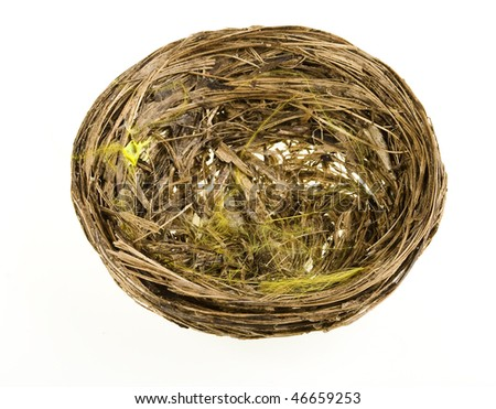 Nest on a white background