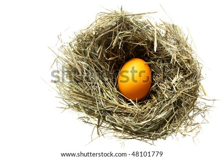 Nest with easter egg isolated over white background