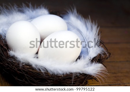 Nest with easter eggs decorated by feathers - stock photo