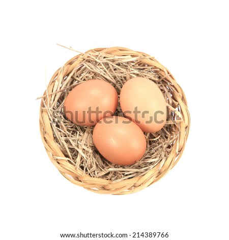 Nest with egg on a white background - stock photo