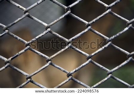 net cage background - stock photo