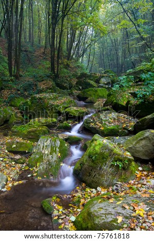 net forest brook flows into the dead wood - stock photo