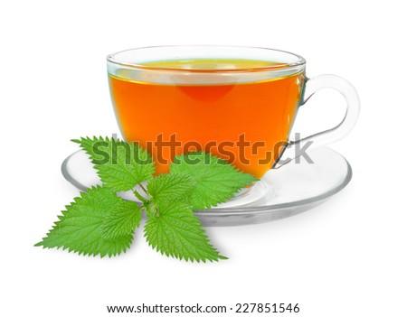 nettle tea  - stock photo