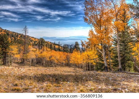 Nevada-Great Basin National Park-Wheeler Peak Trail. This image was created on a beautiful Autumn day in this high elevation National Park. - stock photo