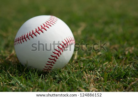 New baseball in the Outfield Grass with room for copy