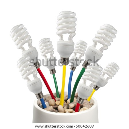 New Bright Ideas - Fluorescent Light Bulbs attached to a colored network cables growing in a pot on a white background