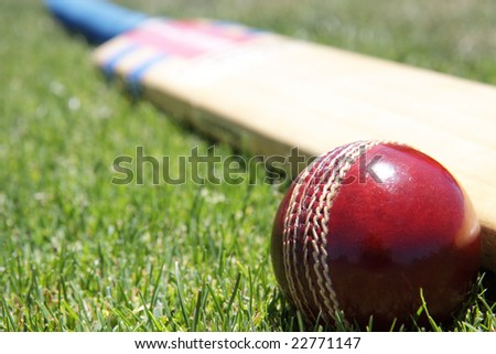 New cricket ball and bat on green grass. - stock photo