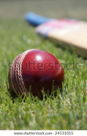 New cricket ball and bat on green grass.