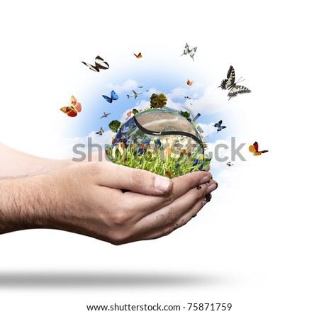 New energy world concept with butterfly and ladybug. More in my portfolio. - stock photo