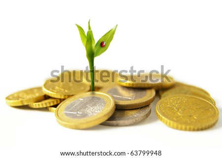 new growth from Euro coins - financial concept - stock photo