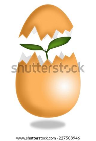 New life from egg - Stock Illustration - stock photo
