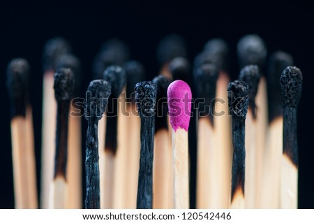 New lilac and burnt matches, close-up, black background