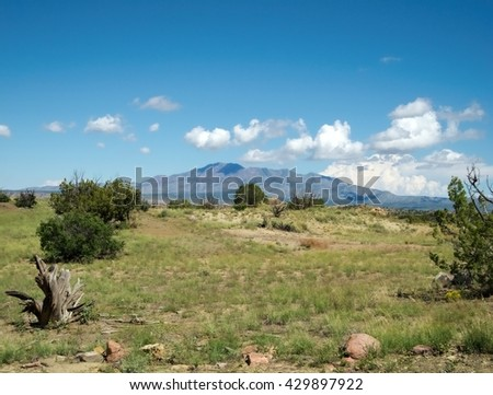 New Mexico, USA. Landscape on hot summer day. Clear blue skies with few clouds. Dry land, bushes and stump. Hills in the background. Heat on a summer day. - stock photo