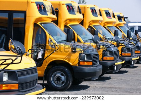 New school buses lined up outside of factory. - stock photo