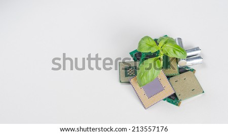 New spark of life. Computer/electronic recycling concept Detailed shot with focus on plant  - stock photo