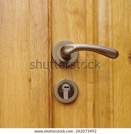 New wooden door with modern handle and lock