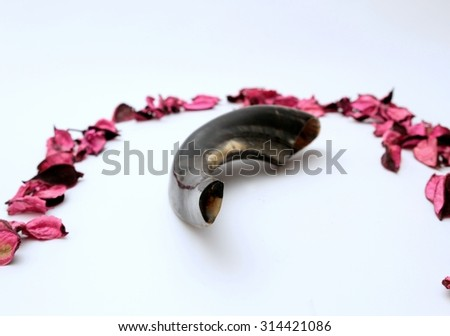 New Year Greeting Card - Shofar on a white background - rosh hashanah (jewesh holiday) concept - stock photo