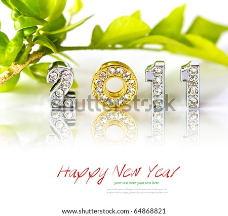 New year 2011 isolated on white background with copy space. - stock photo