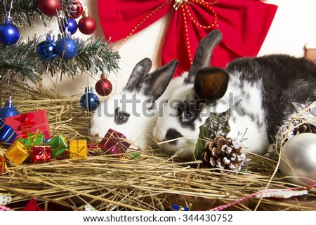 new year rabbits with christmas-tree decorations