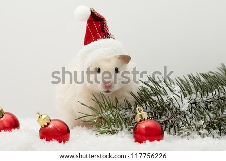 New year's eve hamster with red balloons and the Christmas tree - stock photo