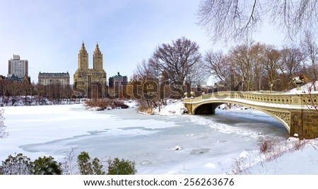 NEW YORK CITY - Central Park frozen winter landscape - stock photo