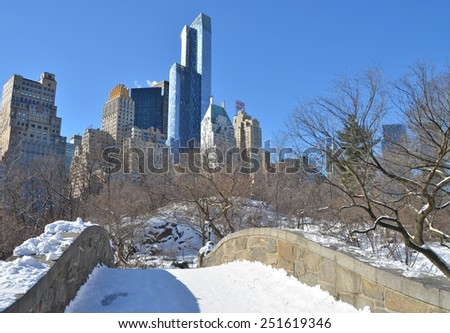 New York City - January 28, 2015: Central Park on January 28, 2015,  Manhattan, New York City, USA. - stock photo