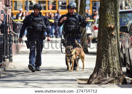 NEW YORK CITY - MAY 1 2015: NYPD emergency services, K9 & helicopter patrol search a closed off a block in Sunset Park, Brooklyn, for a robbery suspect. K9 unit outside apartment building - stock photo