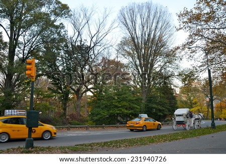 NEW YORK CITY - NOVEMBER 10, 2014: Central Park on November 10, 2014 in Manhattan, New York City, USA. - stock photo