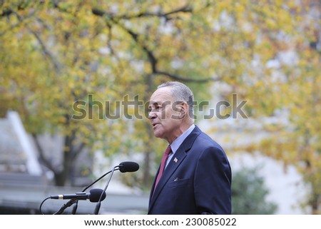 NEW YORK CITY - NOVEMBER 11 2014: the 95th annual Veteran's Day parade along Fifth Avenue is the largest Nov 11 celebration in the United States. US senator Charles Schumer - stock photo