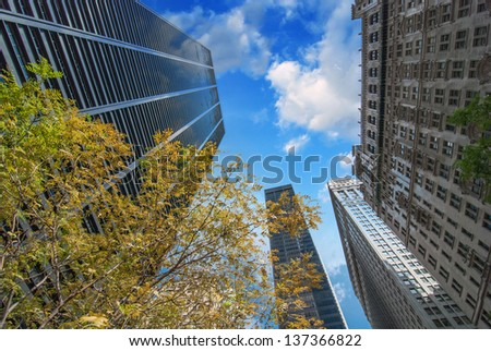 New York City. Upward view of Manhattan Buildings with trees and sky - stock photo