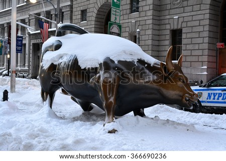 New York City, USA - January 24, 2016: Charging Bull statue covered in snow in Lower Manhattan following the blizzard of 2016 in New York City.