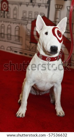 Target dog stock photos images pictures shutterstock What kind of dog is the target mascot