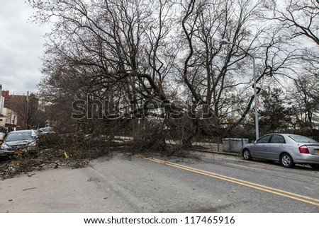 NEW YORK - NOVEMBER 1, 2012: Fallen trees caused by Hurricane Sandy block a street in Brooklyn NY, near Asser Levy Park on November 1, 2012, Brooklyn, NY