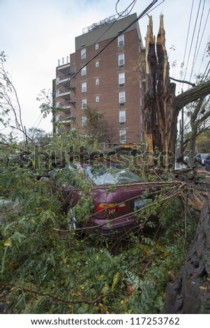 NEW YORK - OCT 30: Fallen tree on a car on the street in Queens borough after hurricane Sandy hit on October 30, 2012 in New York City, NY - stock photo