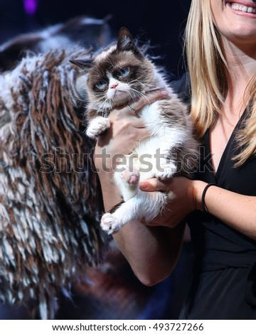 NEW YORK - Sept. 30, 2016: Grumpy Cat visits the cast of CATS on Broadway at the Neil Simon Theatre on September 30, 2016, in New York.