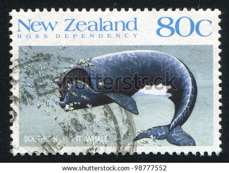 NEW ZEALAND - CIRCA 1988:A stamp printed by New Zealand, shows  whale, circa 1988