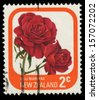 NEW ZEALAND - CIRCA 1975: A stamp printed in New Zealand shows flower Rose Marlene, circa 1975 - stock photo