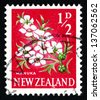 NEW ZEALAND - CIRCA 1961: a stamp printed in the New Zealand shows Manuka Flower, Leptospermum Scoparium, Tea Tree, circa 1961 - stock photo