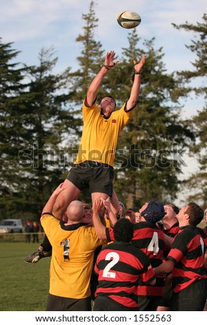 New Zealand club Rugby Action.  Kirwee vs Darfield, a kirwee flanker wins the lineout ball. - stock photo