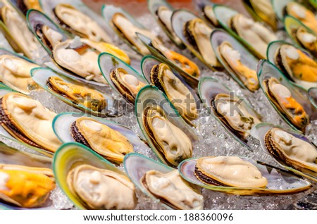 New Zealand green-lipped mussel on buffet line - stock photo