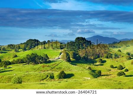 New Zealand landscape - stock photo