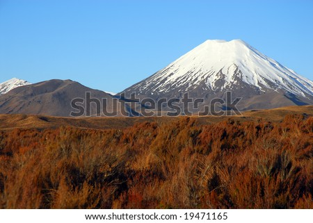 New Zealand's snowcapped Mount Tongariro volcano surrounded by vibrant native grasses - stock photo