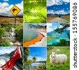 New Zealand set with Kiwi sign, fern and sheep - stock photo