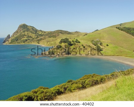 New Zealand tropical seashore - stock photo