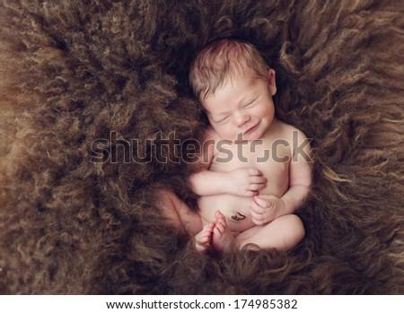 Newborn baby boy sleeping on sheep's wool - stock photo