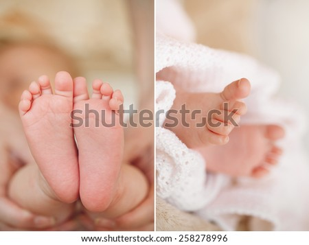 newborn baby feet on female hands. Baby feet in mother hands. A close-up of tiny baby feet. newborn baby feet. Baby feet in mommy's hands - stock photo