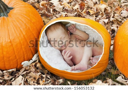 Newborn baby in a fun concept of how babies are grown in a pumpkin patch.