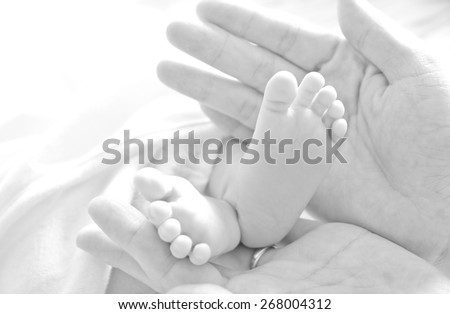 Newborn baby's feet in the mother's hands - stock photo